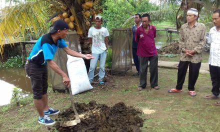 Fakultas Pertanian UPB mengembangkan Demplot Budidaya Padi Organik melalui kegiatan PPM IbM